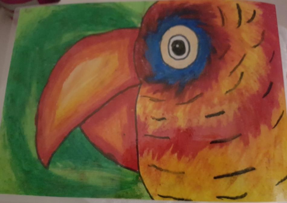 Sophia's parrot